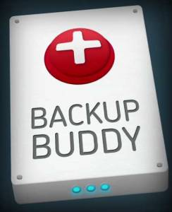 Backup Buddy Review image by Think Big Online